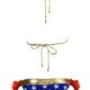 American Flag Bikini wonder woman